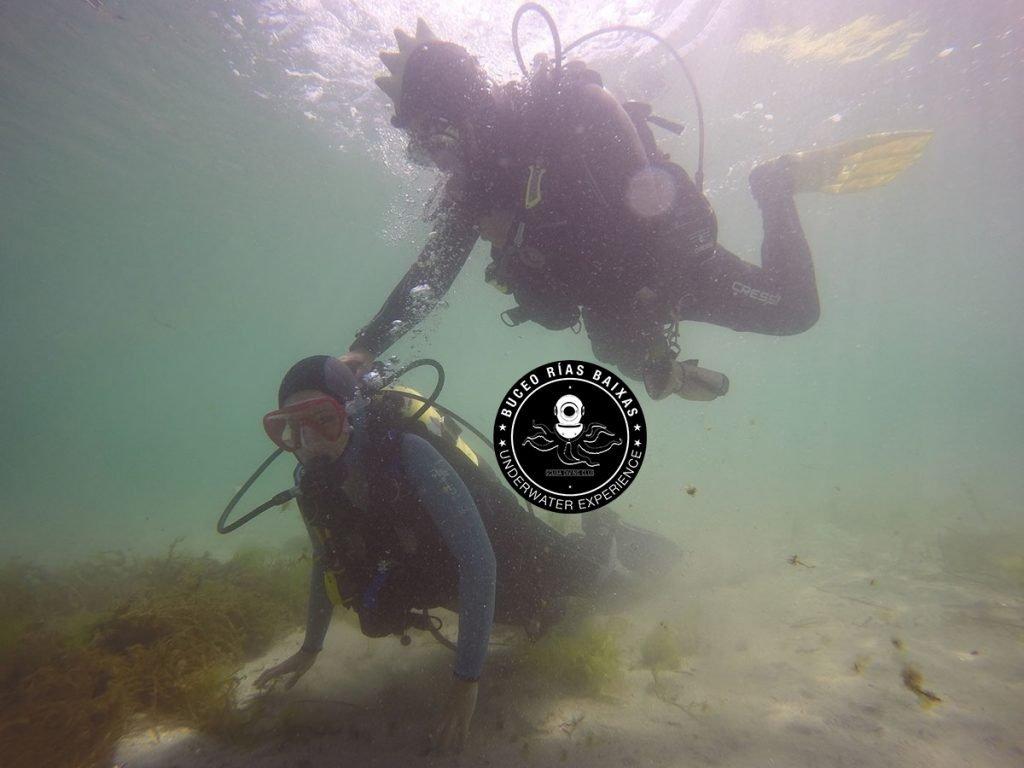 Buceo en Poca profundidad