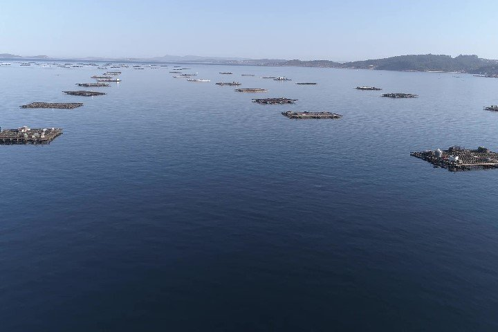 Bateas Rías Baixas